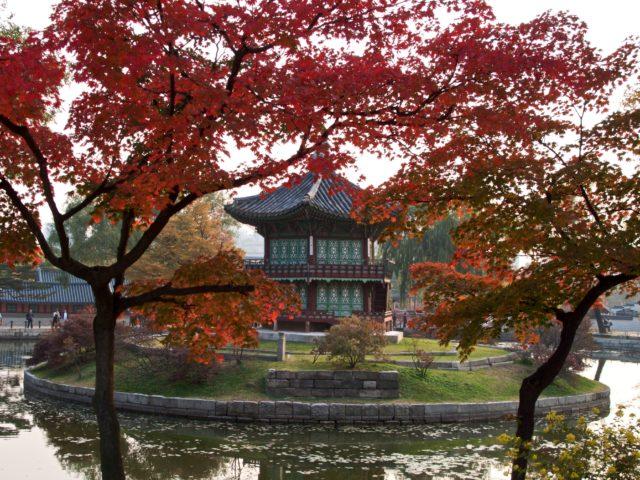 pavilion palace during autumn
