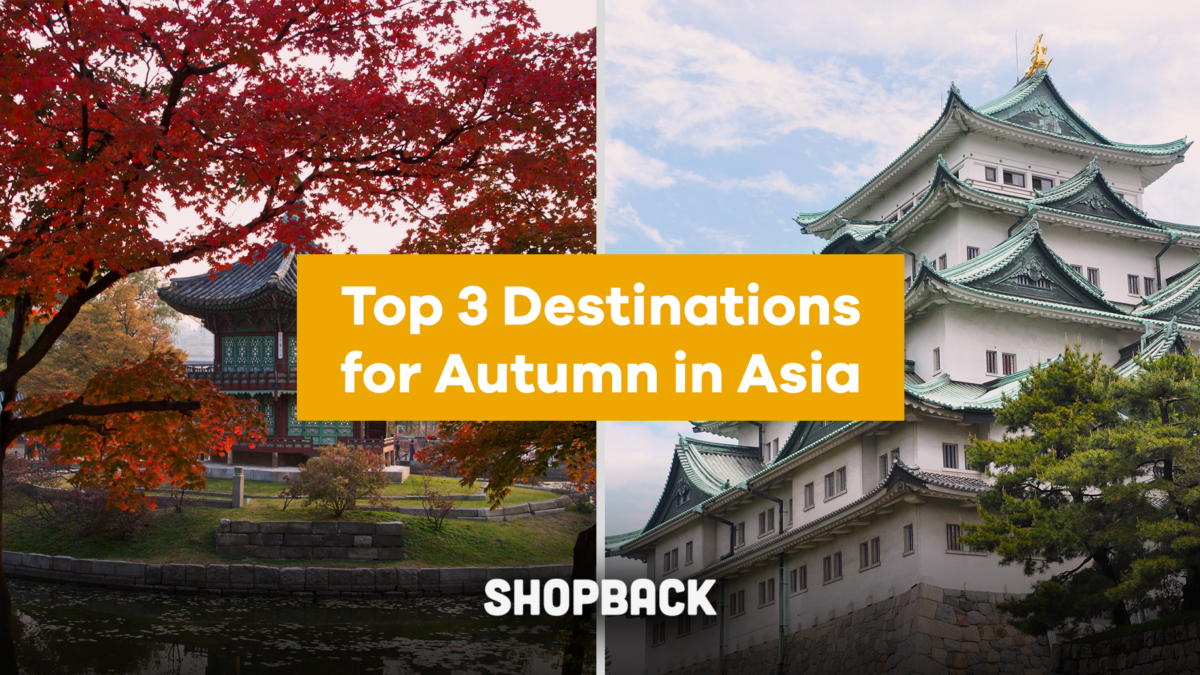 Want to Experience Autumn in Asia? Here's How.