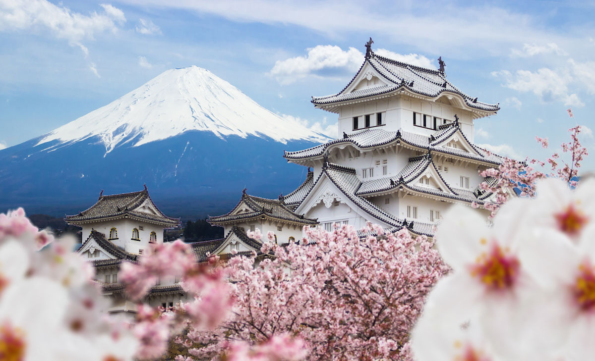 Mount Fuji with Japanese castle and cherry blossoms
