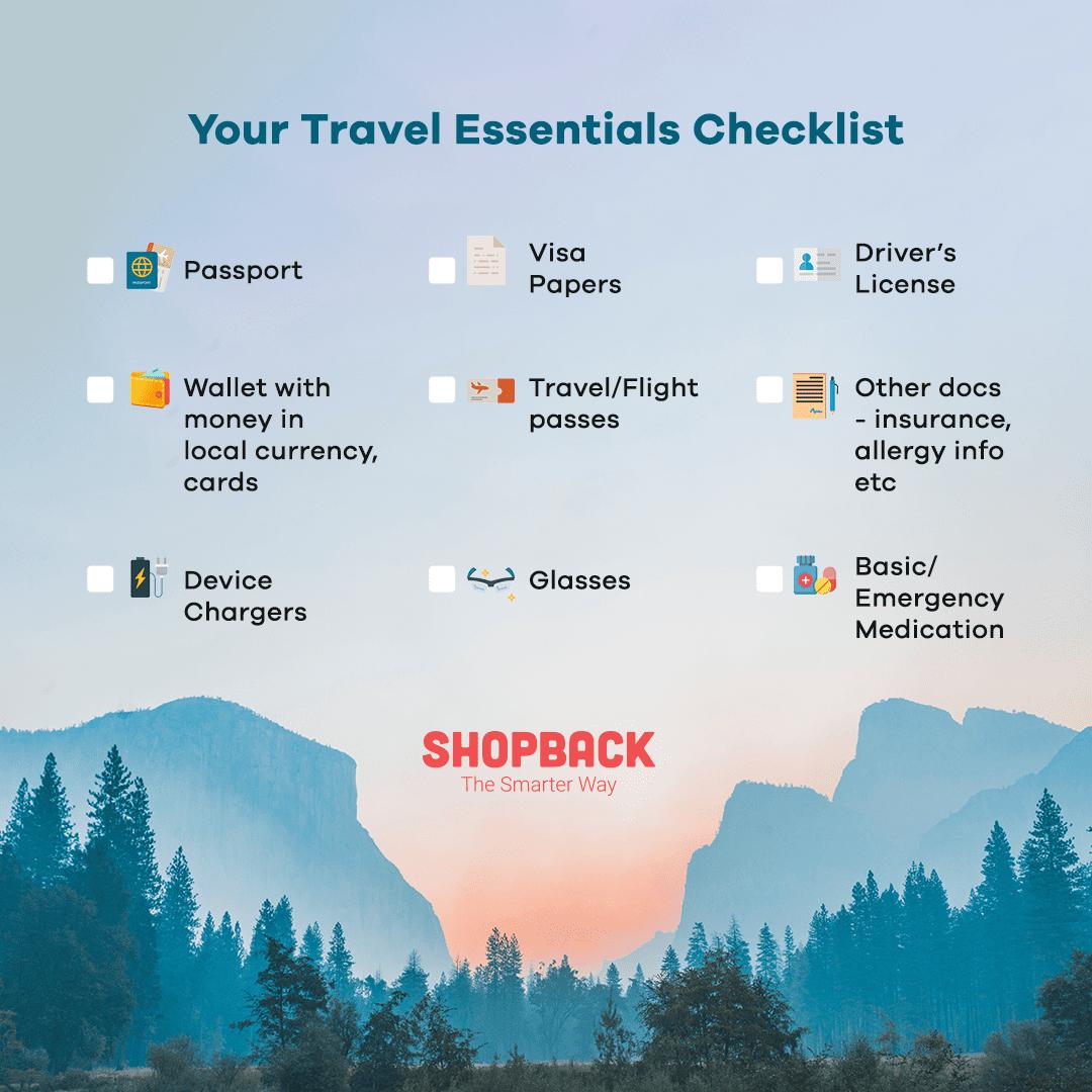 travel essentials infographic