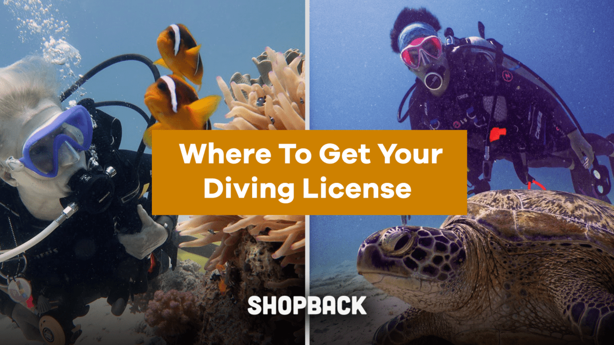 Permission To Dive: Where To Get Your Diving License In Singapore