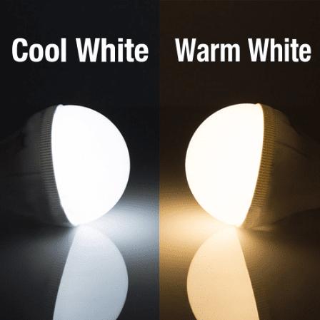 white light and warm light bulb