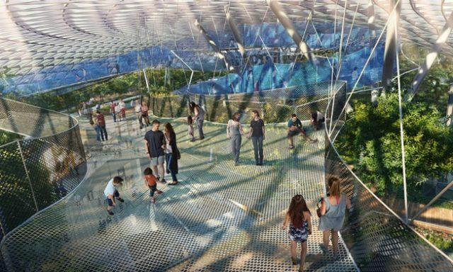Staycation Activity 3: Canopy Park