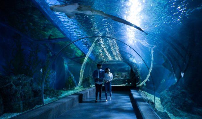 เที่ยวกรุงเทพฯ 1 วัน พิพิธภัณฑ์สัตว์น้ำ
