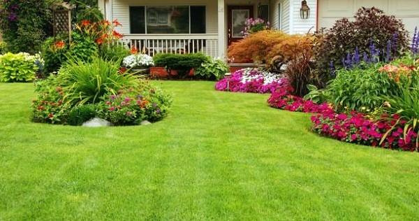 จัดสวนหน้าบ้านแบบประหยัด สวนพุ่ม จัดสวนหน้าบ้านแบบประหยัด จัดสวนหน้าบ้านง่ายๆ จัดสวนหน้าบ้านขนาดเล็ก จัดสวนหน้าบ้านงบน้อย การจัดสวนหน้าบ้าน แบบจัดสวน จัดสวนสวยๆ จัดสวนรอบบ้าน จัดสวนแบบประหยัด จัดสวนเองแบบประหยัด จัดสวนข้างบ้าน สวนหย่อมหน้าบ้าน จัดสวนเล็กๆ ข้างบ้าน จัดสวนง่ายๆ ราคาประหยัด แต่งสวนหน้าบ้านแบบประหยัด
