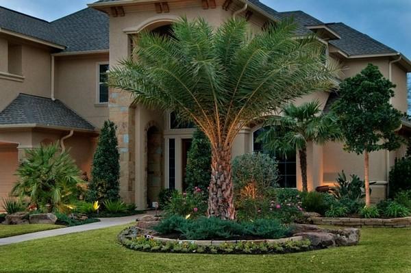 จัดสวนหน้าบ้านแบบประหยัด สวนเมืองร้อนต้นไม้ใหญ่ จัดสวนหน้าบ้านแบบประหยัด จัดสวนหน้าบ้านง่ายๆ จัดสวนหน้าบ้านขนาดเล็ก จัดสวนหน้าบ้านงบน้อย การจัดสวนหน้าบ้าน แบบจัดสวน จัดสวนสวยๆ จัดสวนรอบบ้าน จัดสวนแบบประหยัด จัดสวนเองแบบประหยัด จัดสวนข้างบ้าน สวนหย่อมหน้าบ้าน จัดสวนเล็กๆ ข้างบ้าน จัดสวนง่ายๆ ราคาประหยัด แต่งสวนหน้าบ้านแบบประหยัด