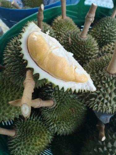 เที่ยวสวนทุเรียนจันทบุรี สวนภูทิพย์ธารา