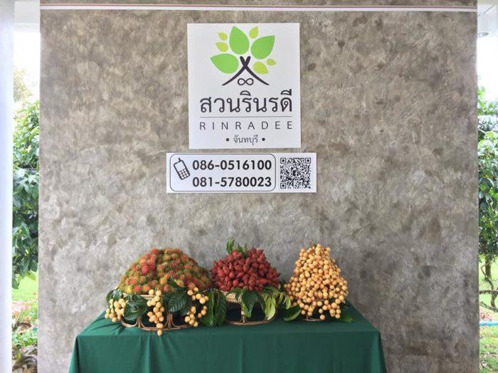 เที่ยวสวนทุเรียนจันทบุรี สวนรินรดี 2