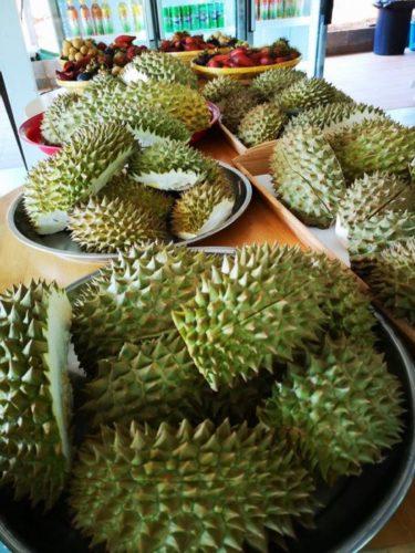 เที่ยวสวนทุเรียนจันทบุรี สวนภูทิพย์ธารา 2