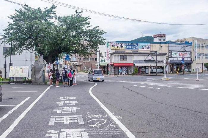 เที่ยวญี่ปุ่นหน้าร้อน ป้ายรถ Green Echo Shuttle Bus