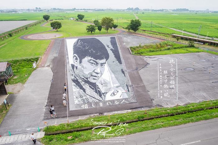เที่ยวญี่ปุ่นหน้าร้อน Rice Paddy Art -Inakadate Village จัดเรียงหิน