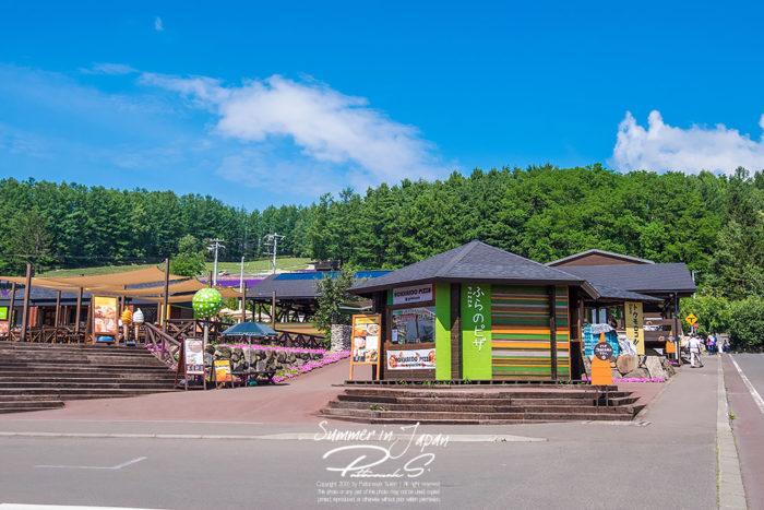 เที่ยวญี่ปุ่นหน้าร้อน Tomita Farm โซนร้านค้า