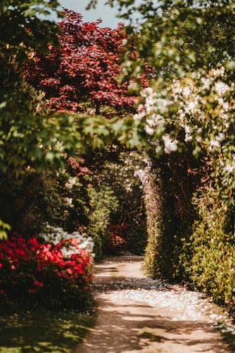 สวนหินข้างบ้าน สวนหินลึกลับ เหมือนเดินอยู่ในโลก Wonderland