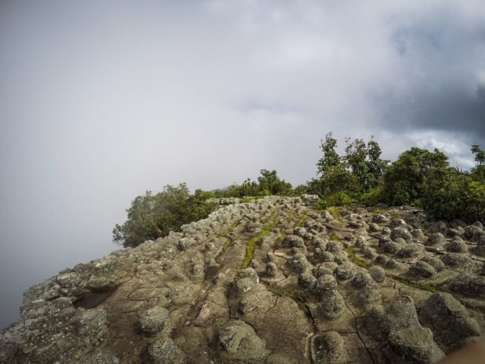 ภูทับเบิกหน้าฝน ลานหินปุ่ม ภูทับเบิก ที่เที่ยวเพชรบูรณ์ เที่ยวเพชรบูรณ์ เที่ยวภูทับเบิก