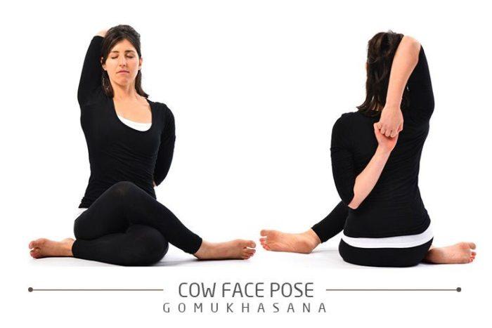 วิธีออกกำลังกายลดความอ้วน ท่าหน้าวัว (Cow Face Pose) ลดไขมันส่วนเกินบริเวณแขน