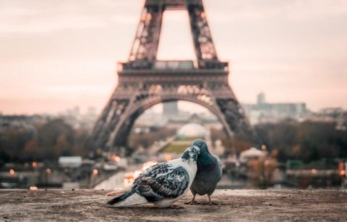 ภัยพิบัติธรรมชาติ ฝรั่งเศส