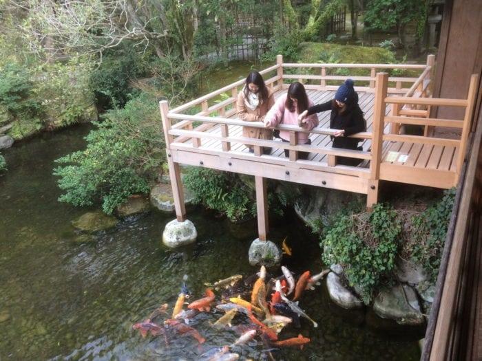 ที่เที่ยวธรรมชาติ สวนญี่ปุ่น แหล่งท่องเที่ยว เที่ยวธรรมชาติ สถานที่ปฎิบัติธรรม ที่เที่ยวธรรมชาติ