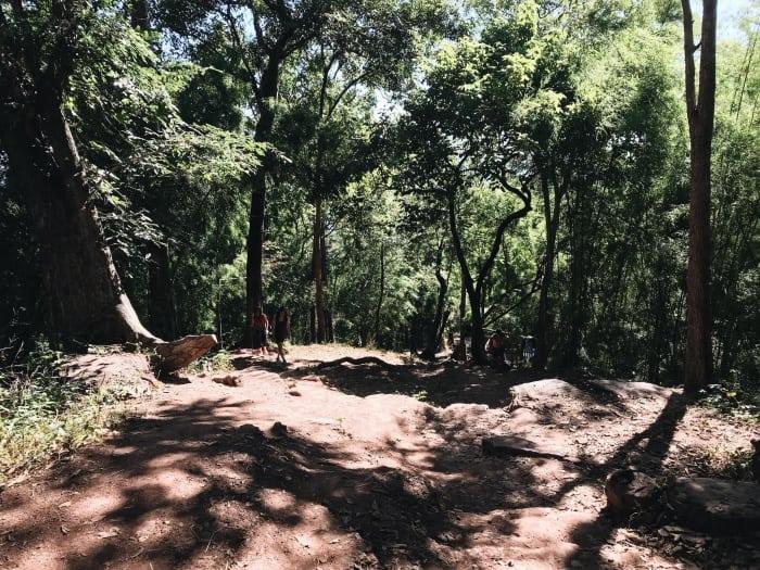 อุทยานแห่งชาติภูกระดึง เที่ยวป่า2