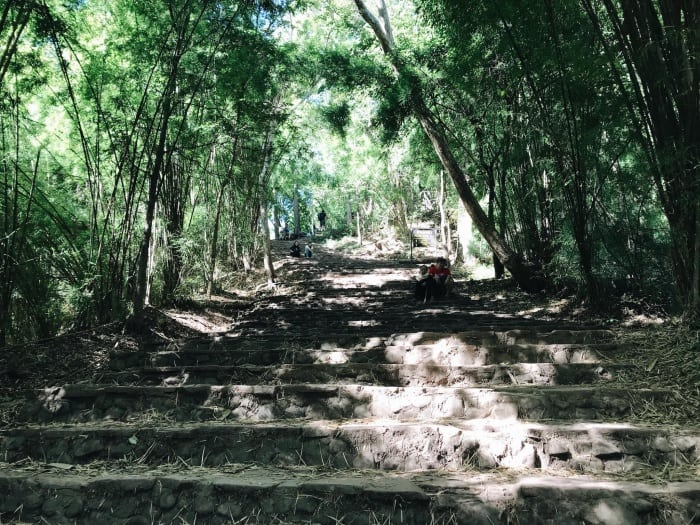 อุทยานแห่งชาติภูกระดึง เที่ยวป่า3
