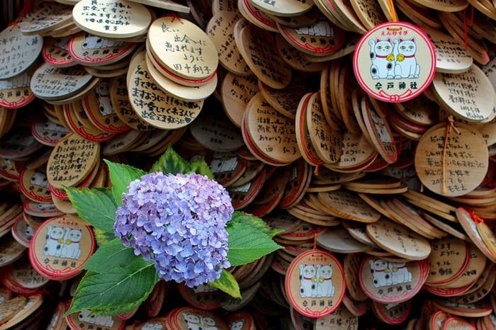 เที่ยวโตเกียวด้วยตัวเอง Imado Shrine 2