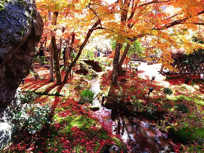 เที่ยวเกียวโตด้วยตัวเอง_Hogoin1