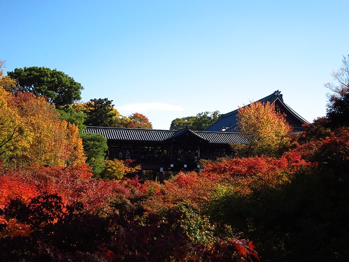 เที่ยวเกียวโตด้วยตัวเอง_Tofukuji2