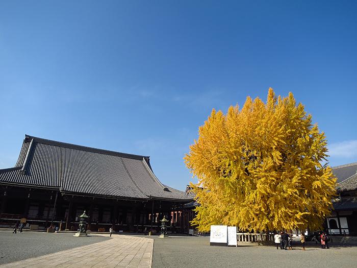 เที่ยวเกียวโตด้วยตัวเอง_Honganji2