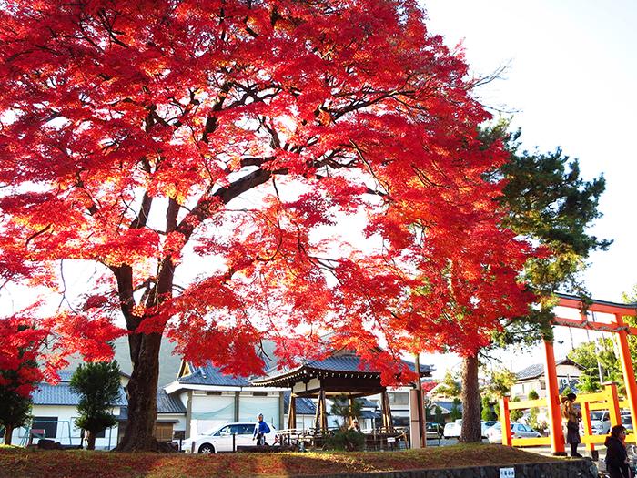 เที่ยวเกียวโตด้วยตัวเอง_ETC