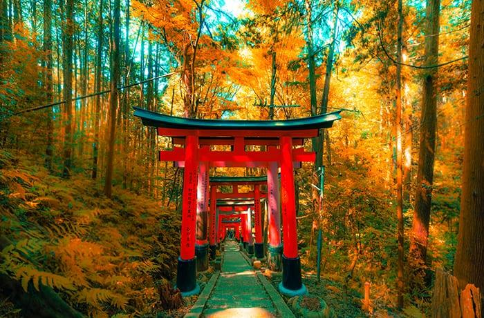 แต่งตัวเที่ยวญี่ปุ่น_5