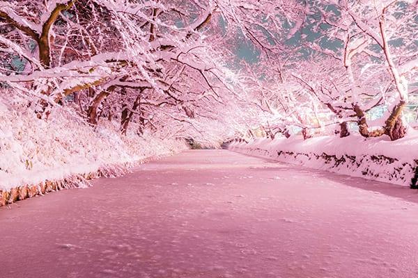 เที่ยวญี่ปุ่นหน้าหนาว_2