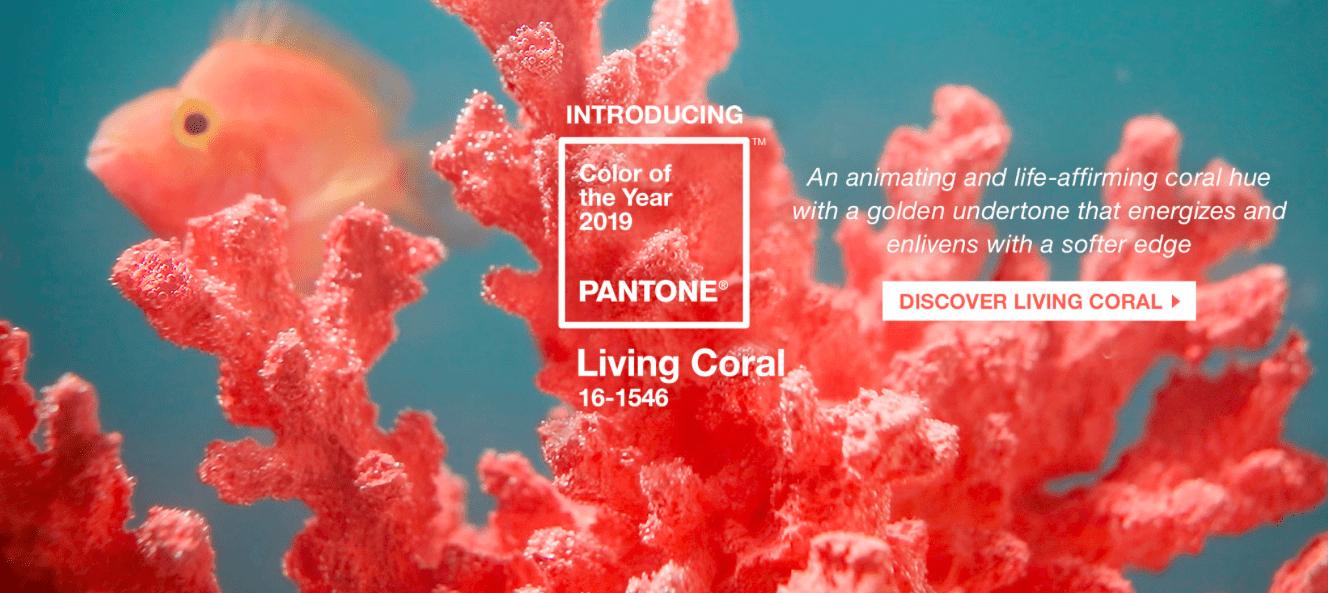 สีลิปสติก ลิปสติก pantone เทรนด์สี 2019