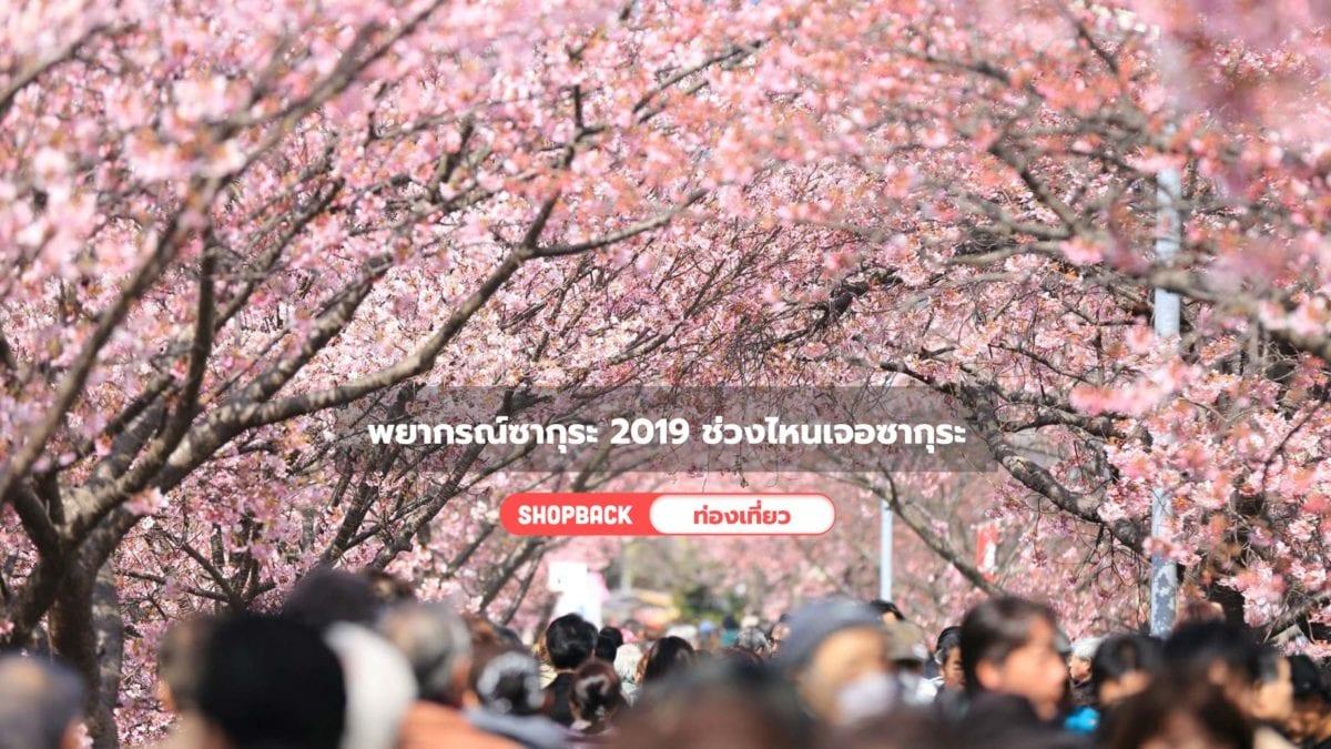 เที่ยวญี่ปุ่น : อัพเดตพยากรณ์ซากุระ 2019 ไปช่วงเวลาไหนถึงเจอซากุระบานสวย!