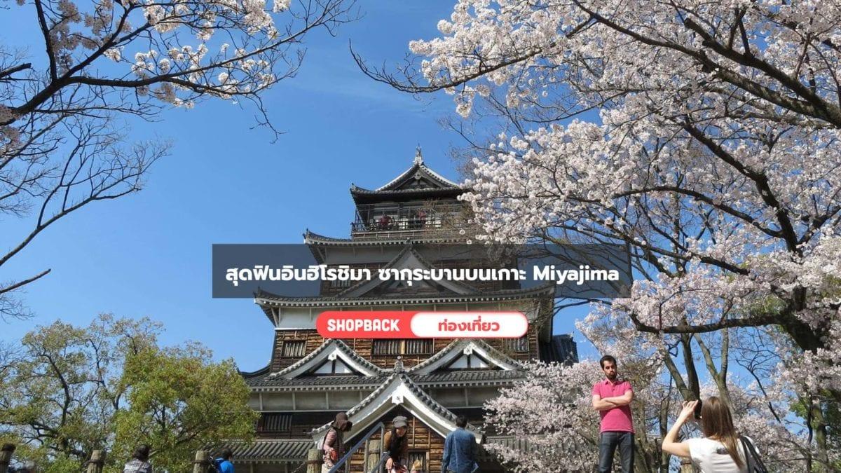 เที่ยวญี่ปุ่น : 2 วัน 1 คืนสุดฟินอินฮิโรชิมา ซากุระบานสะพรั่งบนเกาะ Miyajima