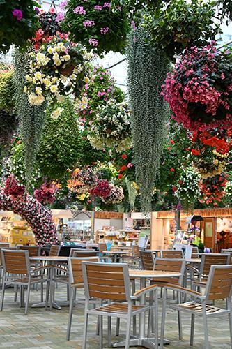 mishima-skywalk_flower-cafe