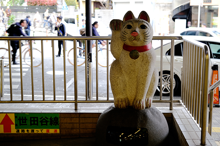 เที่ยวญี่ปุ่น, เที่ยวโตเกียว, ที่เที่ยวโตเกียว, แมวกวัก