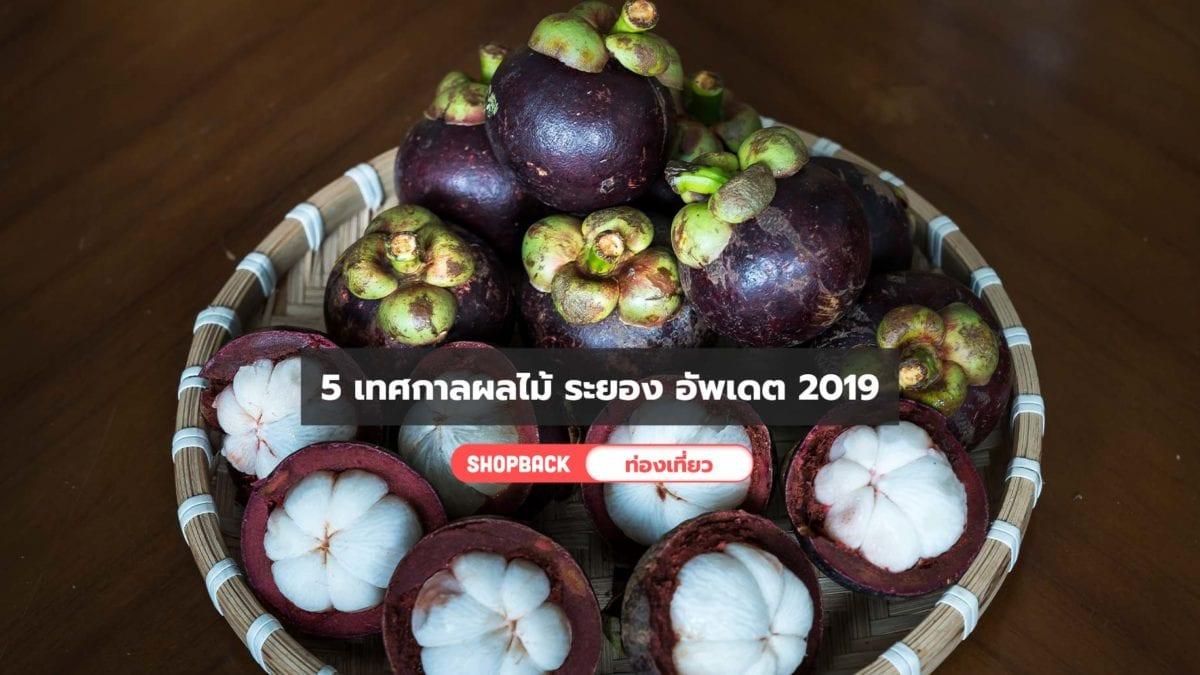 ช่วงเวลาดีๆ! 5 เทศกาลผลไม้ ระยอง อัพเดต 2019 สายกินผลไม้หน้าร้อนห้ามพลาด