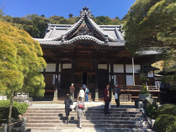 เที่ยวญี่ปุ่น, shizuoka, shizuoka เที่ยว, ชิซูโอกะ