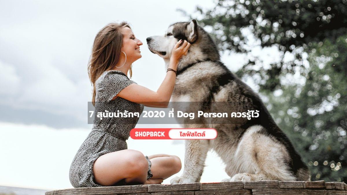 รวม 7 สุนัขน่ารักๆ 2020 พันธุ์น่ารักน่าเลี้ยง ที่ Dog Person ควรรู้ไว้