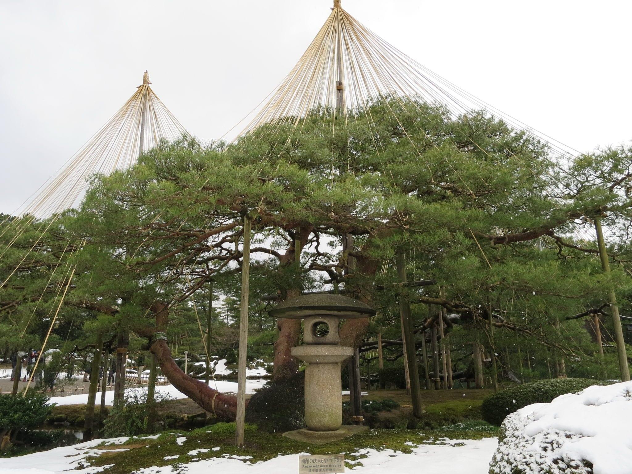 เที่ยวญี่ปุ่น ที่เที่ยวญี่ปุ่น ที่เที่ยวคานาซาว่า เที่ยวคานาซาว่า