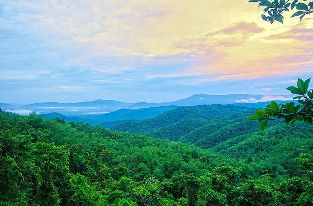 เที่ยววังน้ำเขียว, วังน้ำเขียว, ที่เที่ยววังน้ำเขียว, เที่ยววังน้ำเขียว 1 วัน