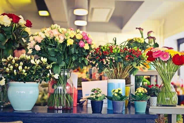 ดอกไม้วันไหว้ครู, ร้านดอกไม้สด