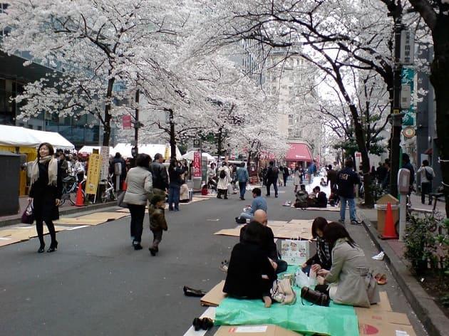 พยากรณ์ซากุระ 2020 โตเกียว, ซากุระบานช่วงไหน 2020