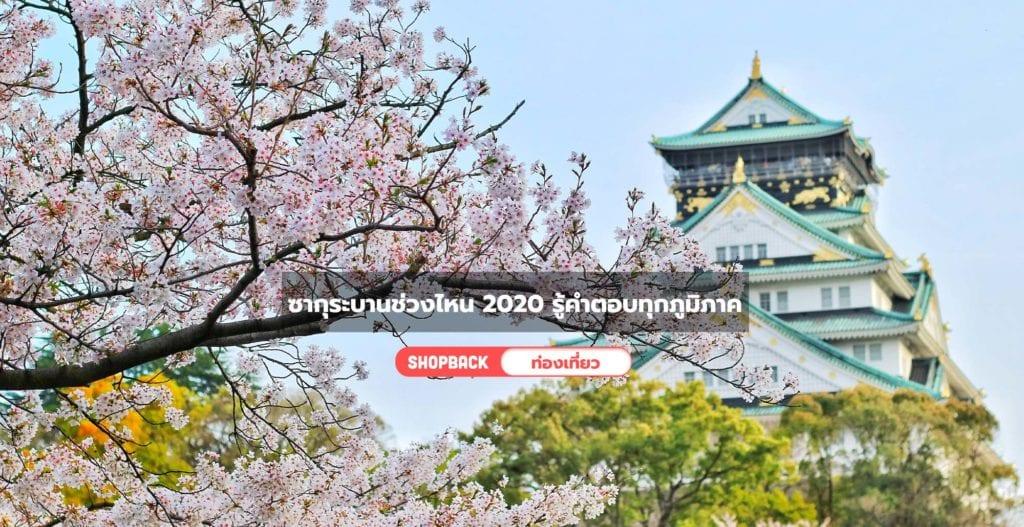 ซากุระบานช่วงไหน 2020