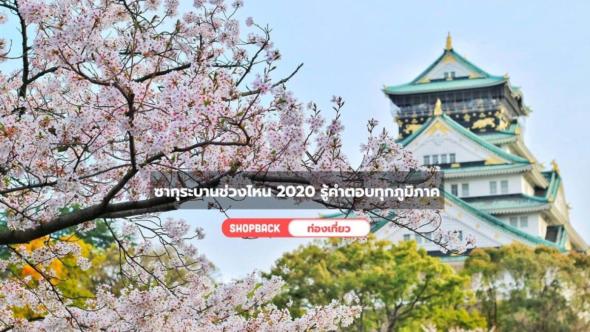 ซากุระบานช่วงไหน 2020 รู้คำตอบทุกภูมิภาค (ญี่ปุ่น) ก่อนใครที่นี่