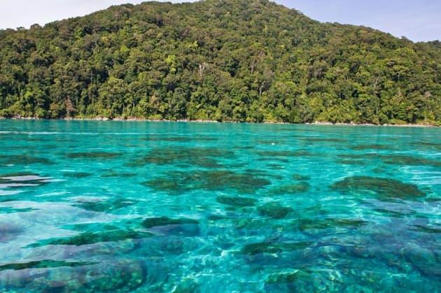 ทริปดำน้ำ, ดำน้ำดูปะการัง