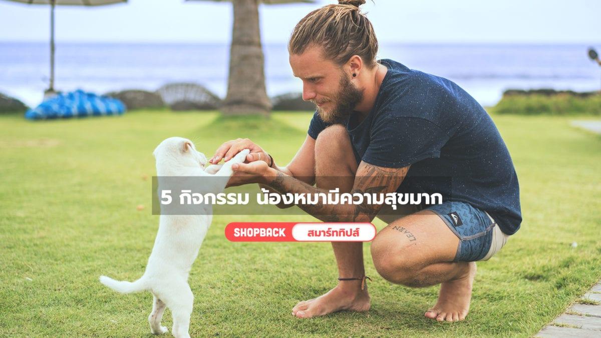 5 วิธีเล่นกับหมา กิจกรรมไหนที่ชวนน้องหมาทำแล้วมีความสุขมาก