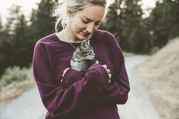 แมวเหมียวน่ารัก, รักแมว