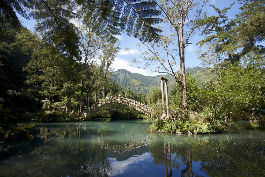 台灣的森林公園很適合踏青