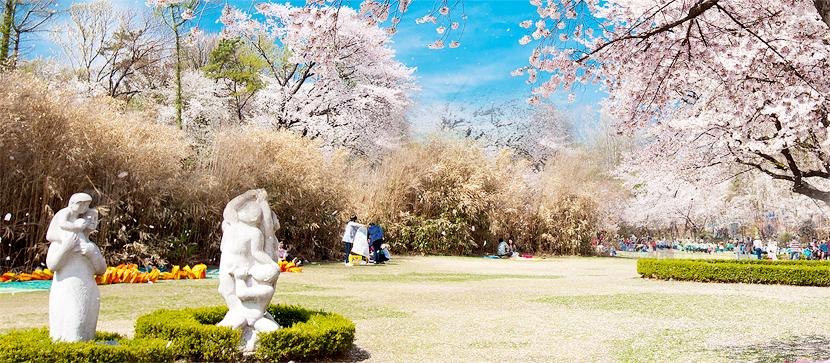 韓國免費景點首爾兒童大公園