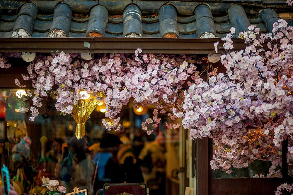 2019 日本旅遊上網比一比!sim卡、Wi-Fi分享器、國際漫遊一篇教你選
